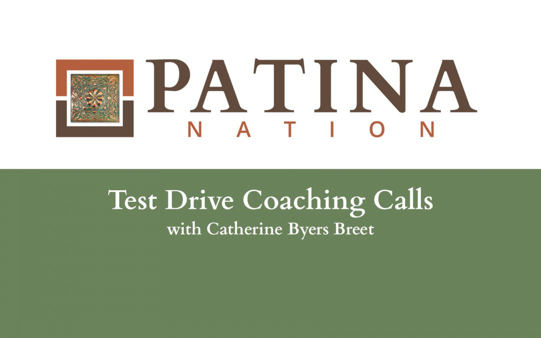Test Drive Coaching Calls